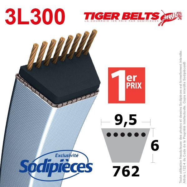 Courroie 3L300 Tiger Belts 9,5 x 6 x 762 mm