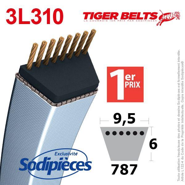 Courroie 3L310 Tiger Belts 9,5 x 6 x 787 mm