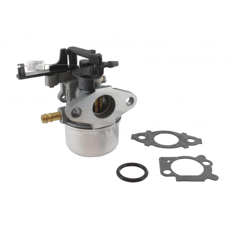 Carburateur pour Briggs & Stratton 796608