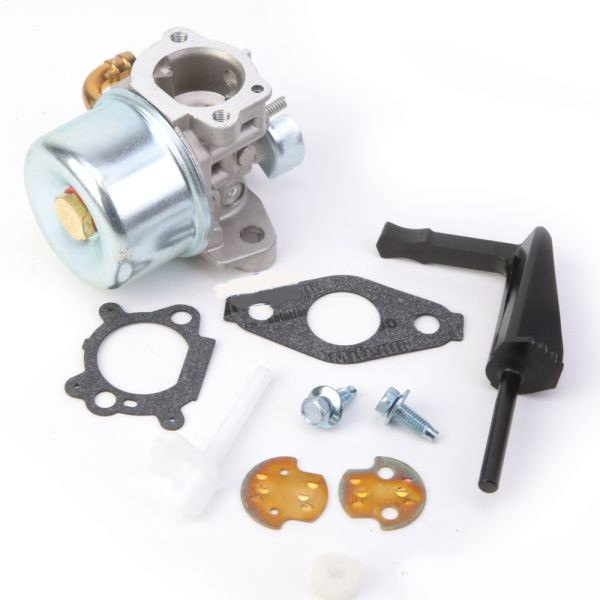 Carburateur pour Briggs & Stratton 798653, 791077, 795069