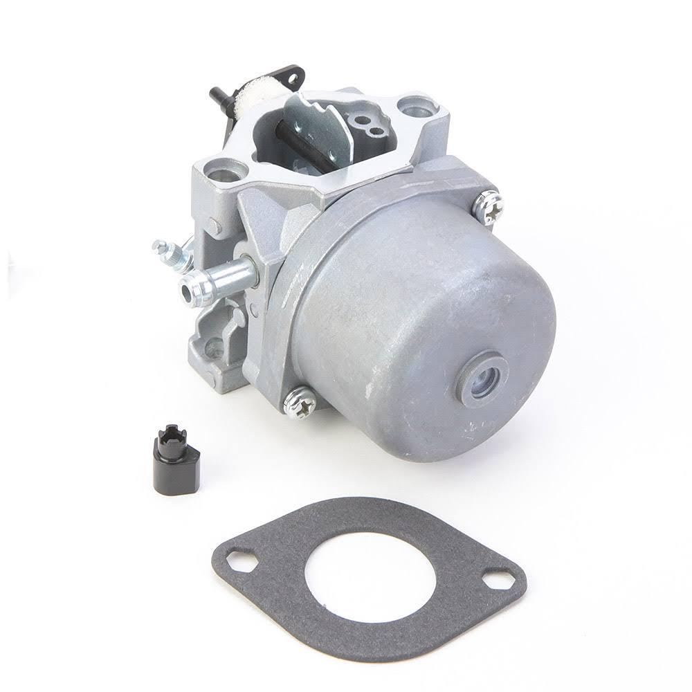 Carburateur pour Briggs & Stratton 799728, 498027, 495706