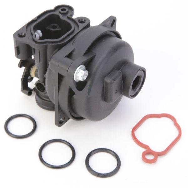 Carburateur pour Briggs & Stratton 799583, 593261